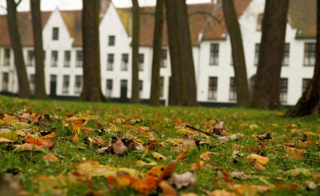 201311 Bruges 204